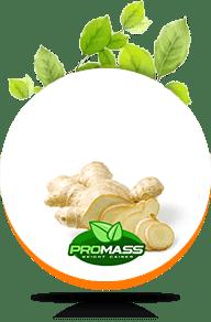 promass kilo aldırıcı